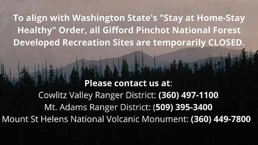 Select graphic to learn more about forest wide temporary closures.