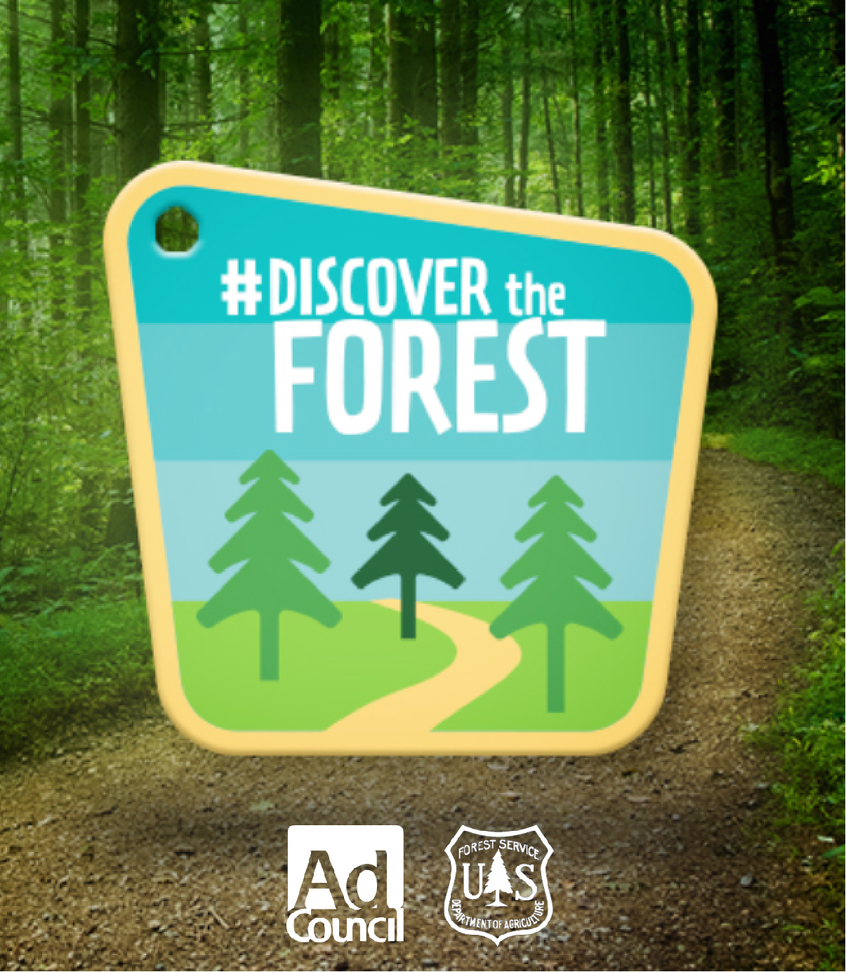 Discover the Forest Logo