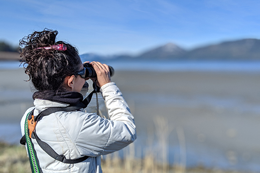 A woman stands with binoculars in hand to catch sight of migrating shorebirds.