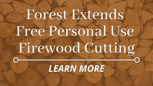 Forest extends free personal use firewood cutting.