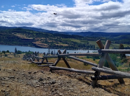 Log fencing on an open plateau with a view of the Columbia River.