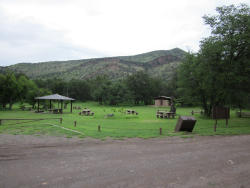 Camp Rucker Group Site