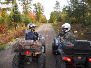 Explore OHV riding on the forest.