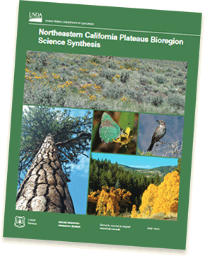 Northeastern California Plateaus Bioregion Science Synthesis