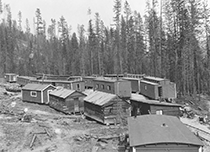 Thumbnail graphic of a railroad logging camp showing railcars in the forest set up for housing.