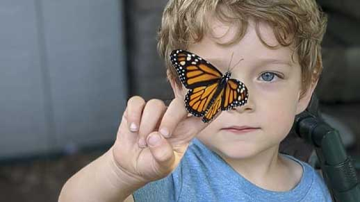 Young boy with monarch butterfly on his finger