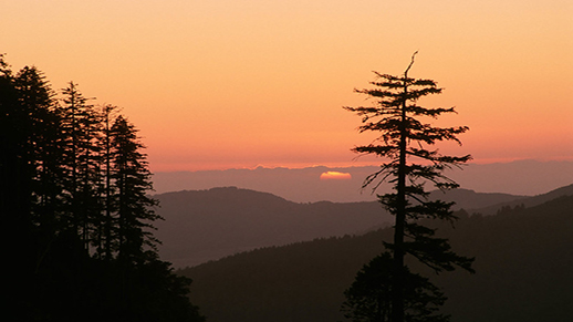 Sunrise over the Rogue River-Siskiyou National Forest