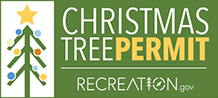 Christmas Tree Permits with Recreation.gov