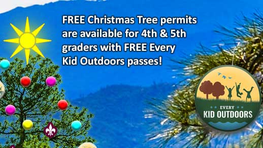 Free Christmas tree permits for 4th and 5th graders with free EKO passes.
