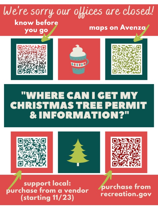 where to get your tree tag this year! for web