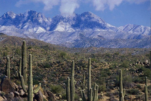Four Peaks with Snow on the Tonto National Forest