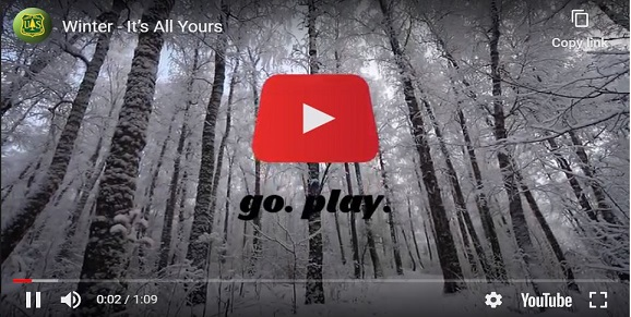 Snow covered trees in a forest with youtube play icon.