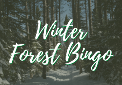 Winter Forest Bingo