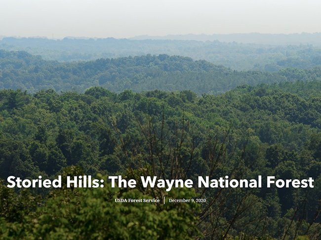 Storied Hills: The Wayne National Forest