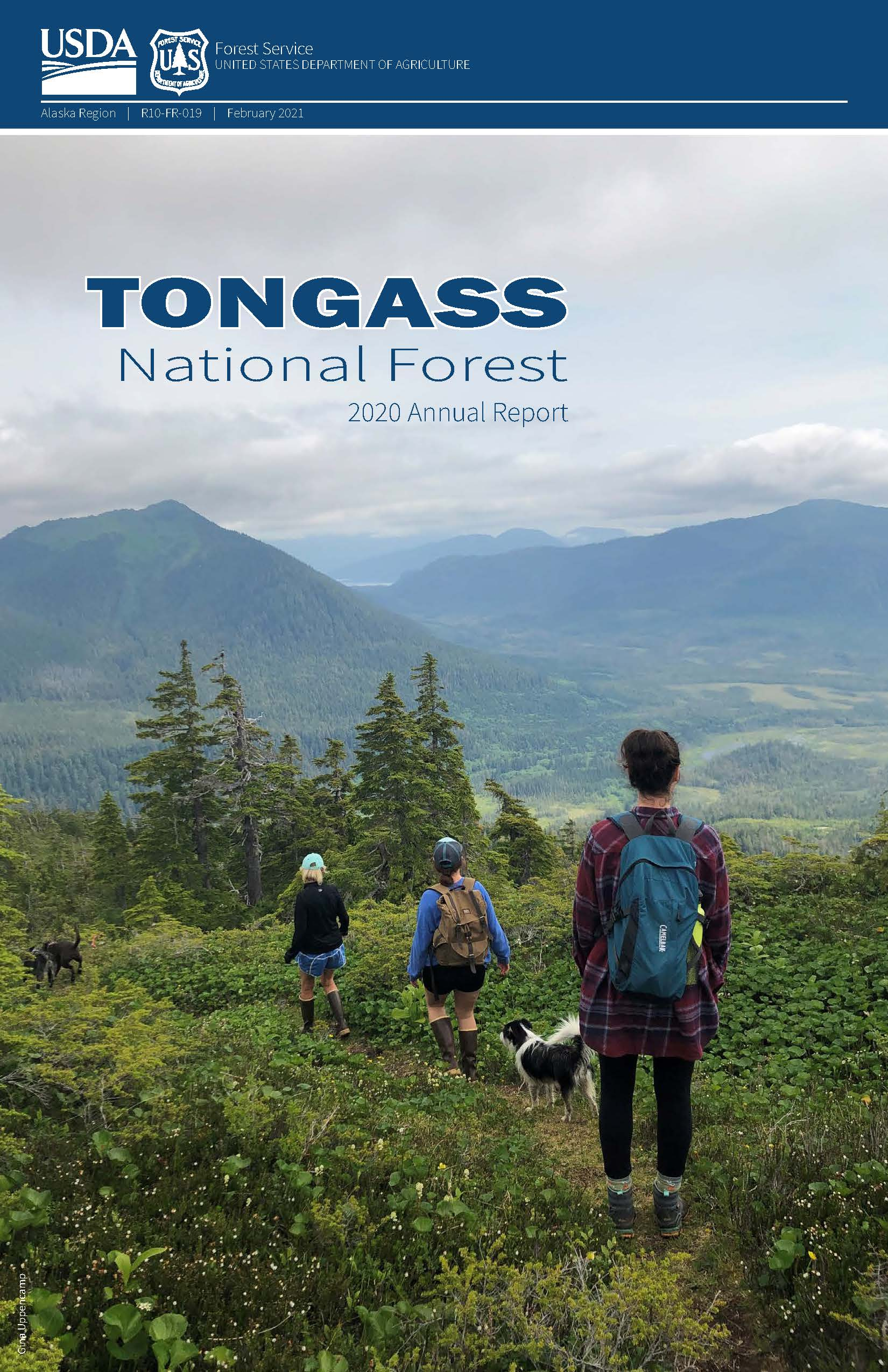 Front page of the State of the Tongass, 3 hikers and a dog walking through a green valley with trees