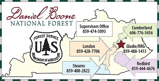 Daniel Boone National Forest numbers
