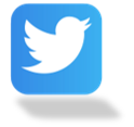 Blue box with white Twitter bird in it