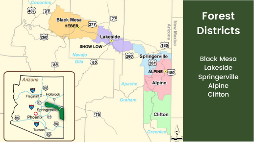 Map outlining the Districts on the Apache-Sitgreaves National Forest