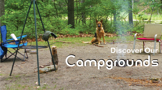 Discover Your Place: Camping