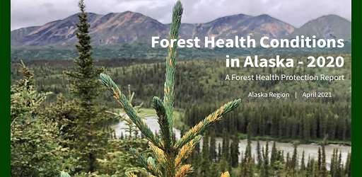 Forest Health Conditions in Alaska 2020 report