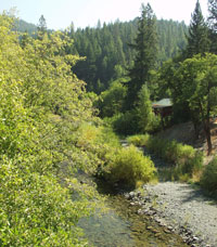 [Photograph]: South Fork of the Salmon River