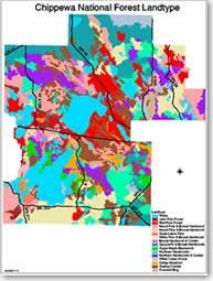chippewa national forest geospatial data