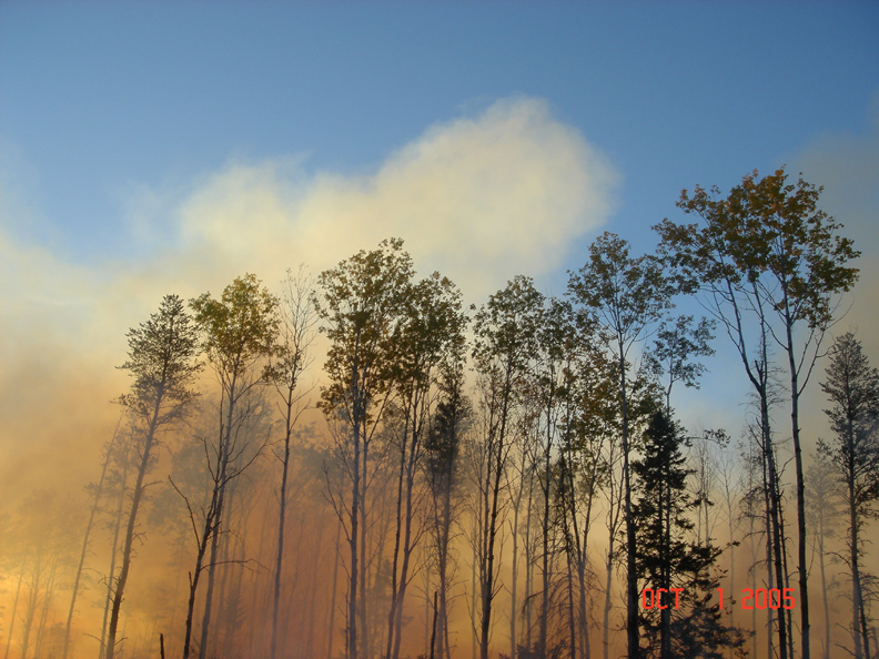Prescribed Burn | Chippewa National Forest