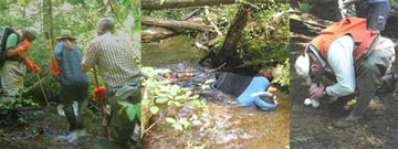 Three photos of people working in streams.