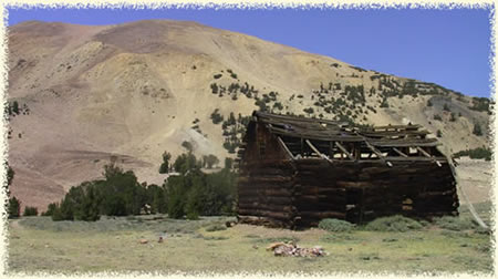 [Photo] Cabin in an old mining camp in the Sweetwater Mountains. Elevation is around 10,000 feet. Photo by Jack Scott.