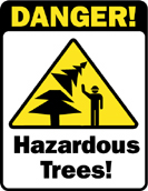 Hazardous Trees