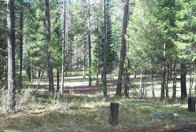 Photo of a site at Poverty Flat Campground.