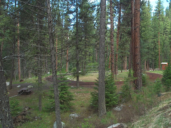 Photo of a campsite at the Four Mile Campground.