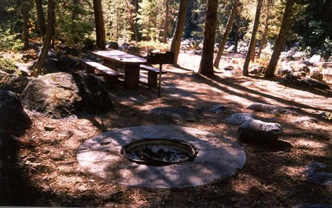 Photo of a campsite at the Ponderosa Campground.