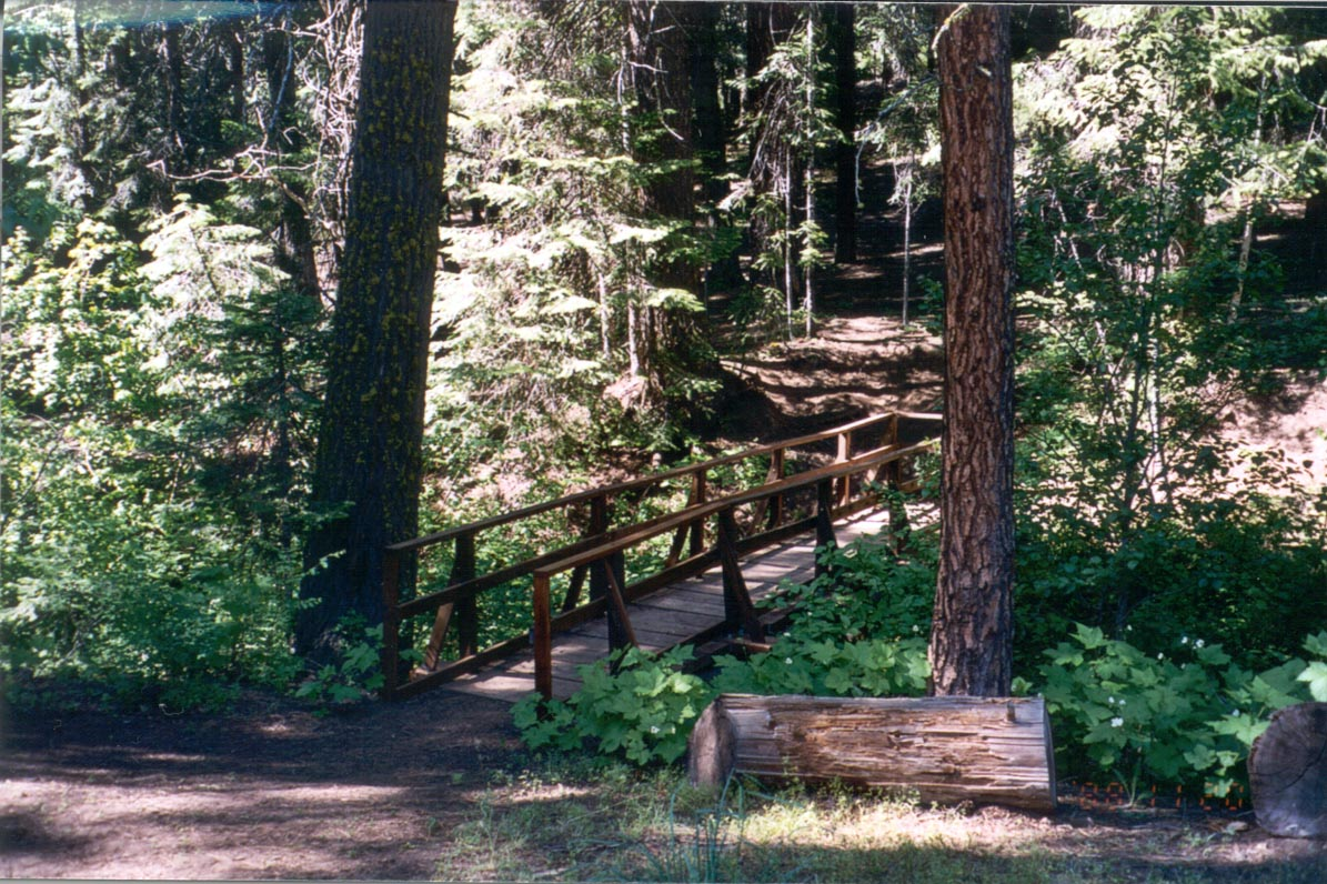 Photo of a bridge in the Spring Creek Campground.