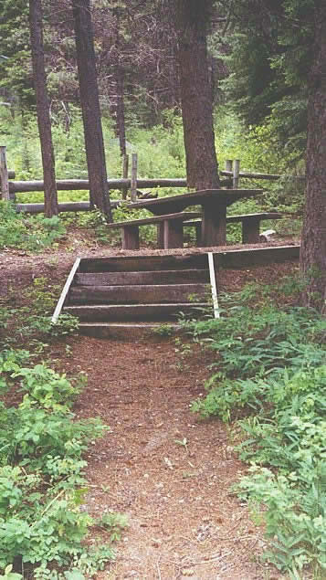 Photo of stairs leading to picnic table at a campsite in the Last Chance Campground.