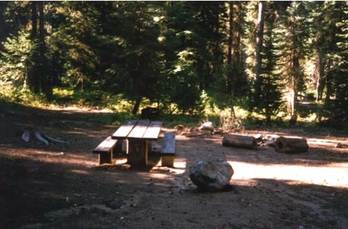 Photo of a picnic table in a campsite at Lake Fork Campground.