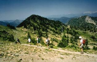 Flathead National Forest - Jewel Basin Hiking Area on