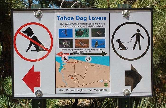 Photo Sign At Taylor Creek Visitor Center Showing Where Dogs Are Allowed