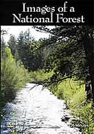 Cover of Images of a National forest video with river and trees in view.