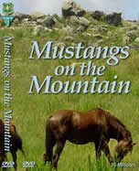 Scanned copy of Mustangs on the Mountain video cover.