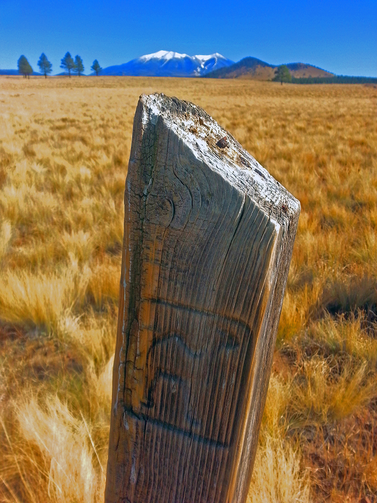 A wooden post marker on the Beale Wagon Trail