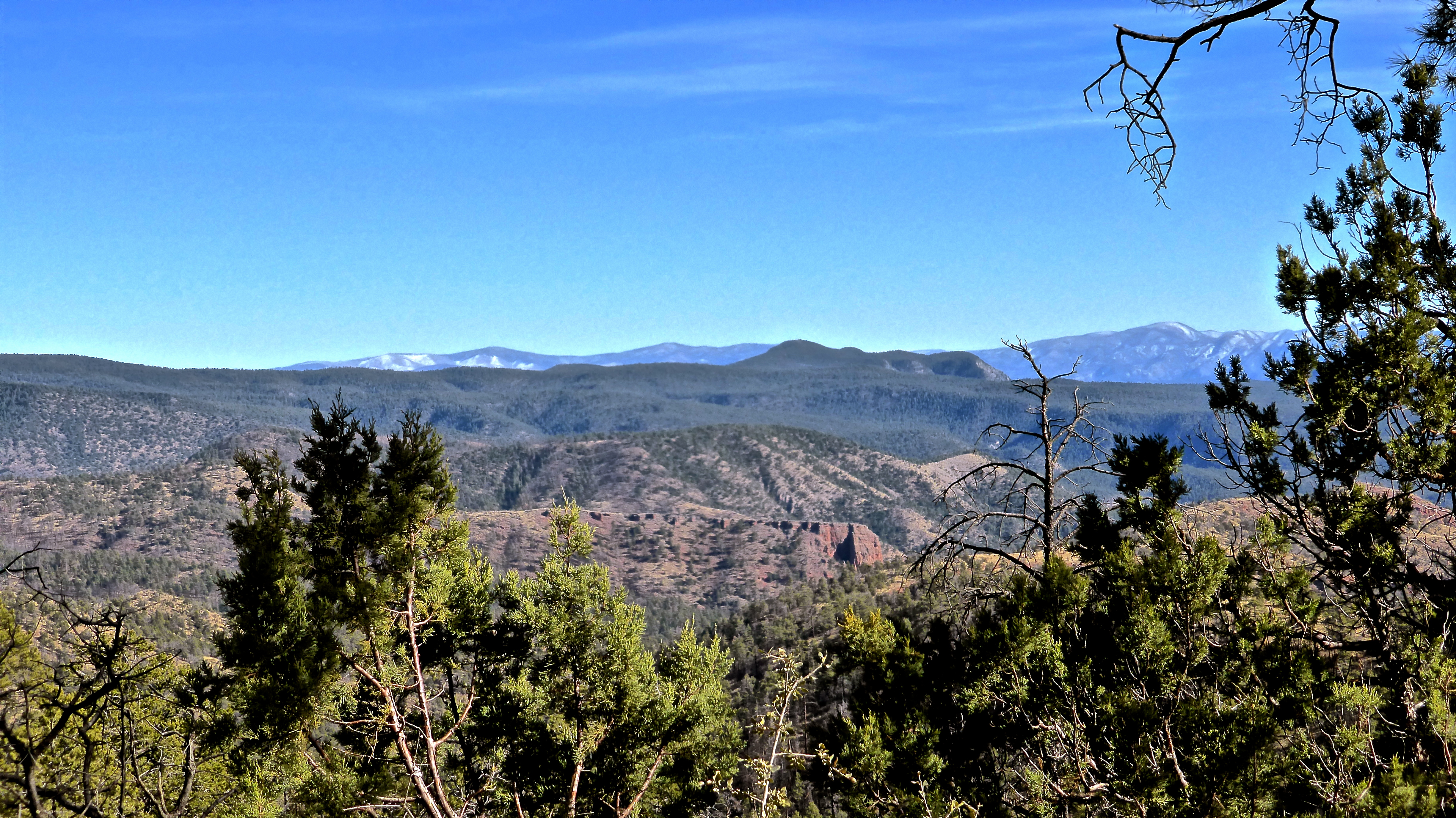Apache and Sitgreaves National Forests - Blue Range Primitive Area ...