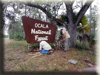 Volunteers cleaning up around the Ocala National Forest sign