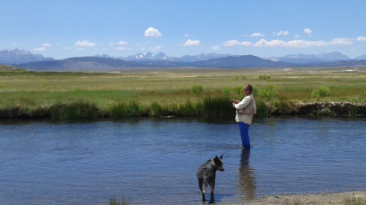 Man and his best friend (dog) enjoying a beautiful day fishing on the Upper Owens River, with views of Inyo National Forest