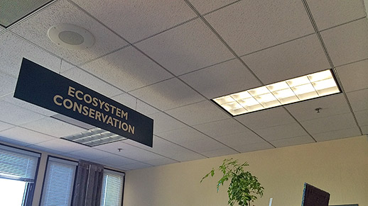 Rectangular shaped ceiling light next to Ecological Restoration sign in an office.