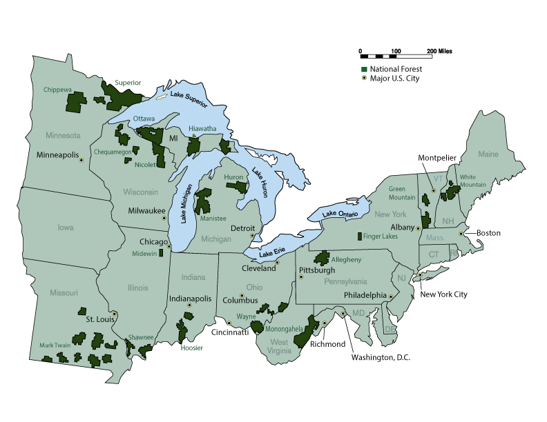 A map of the Eastern Region of the United States displaying National Forests and major U.S Cities