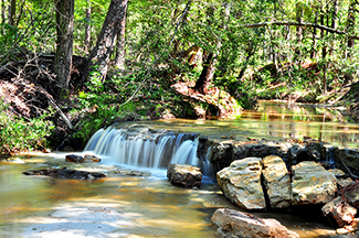 Waterfall on Boykin Creek - Angelina N.F.