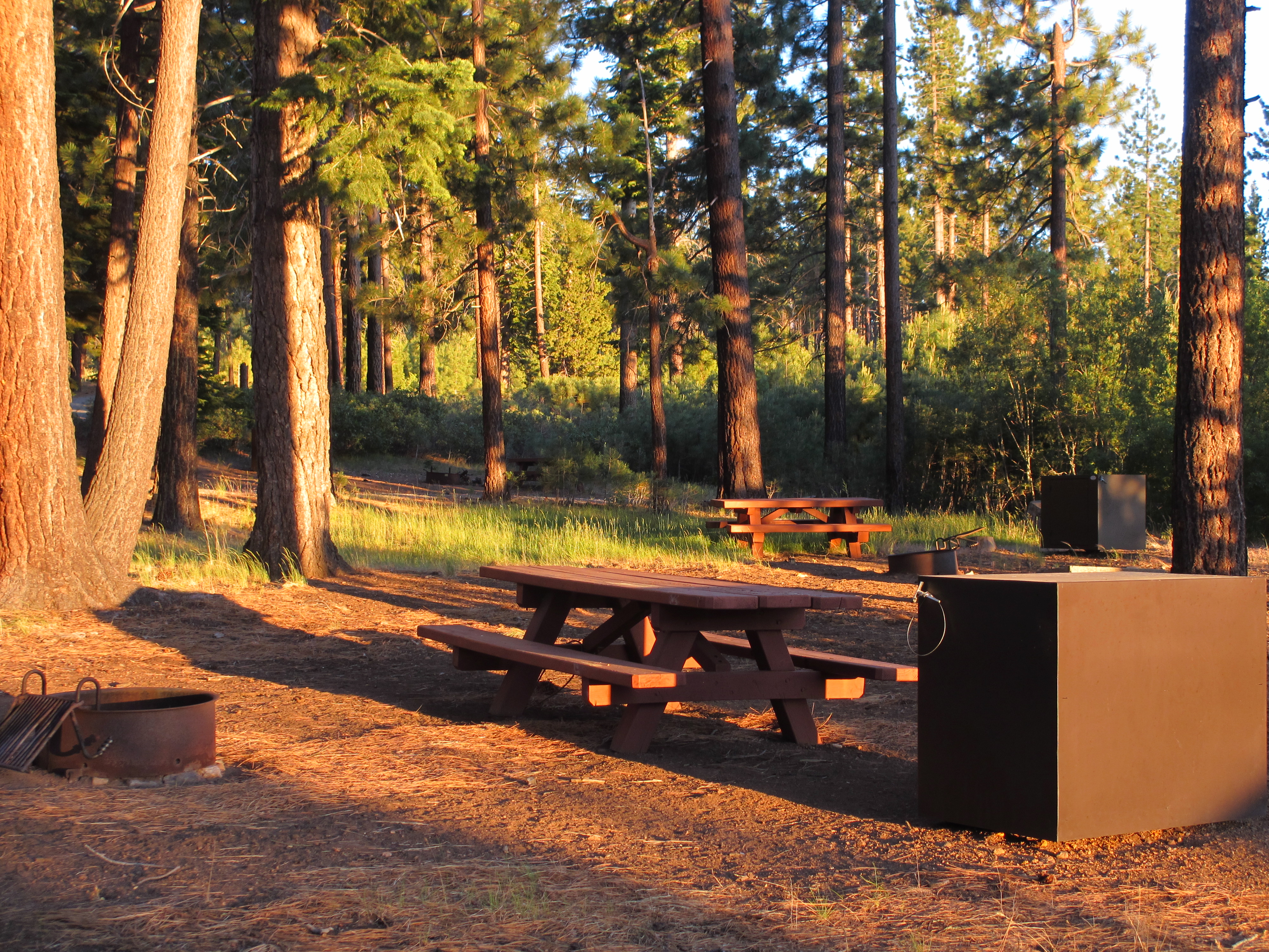 camping in the woods with a fire.  Camping Campsite With Picnic Table Fire Pit In Woods Throughout Camping In The Woods With A Fire A