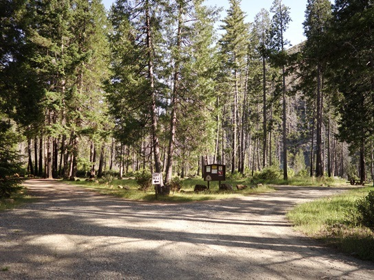 North Fork Campground loop road with information board in view; campsite with picnic table to right.