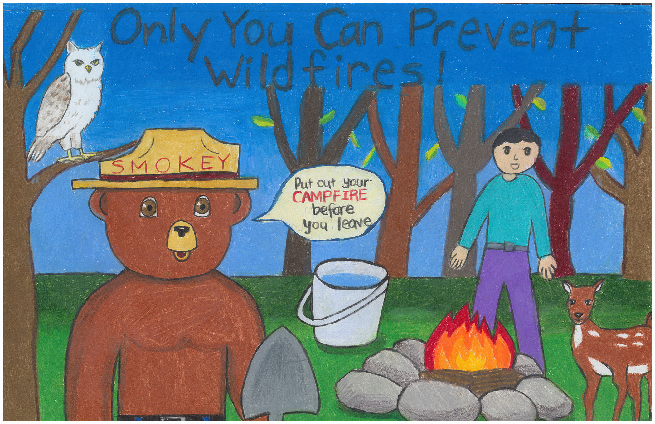 Smokey Bear & Woodsy Owl Poster Contest entry